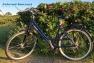fahrrad-konzept-sylt-trekkingrad-04