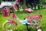 Fahrrad Konzept Sylt - Hier leihen Sie Ihr Kinderrad im Urlaub.