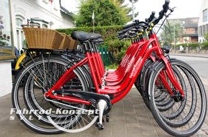 Ihr City- und Tourenrad auf Sylt.