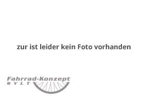 Fahrrad Nachläufer leihen auf Sylt.